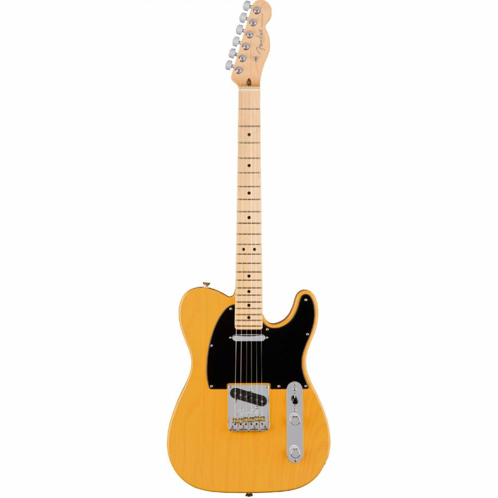Fender AM PRO TELE MN BTB (ASH)