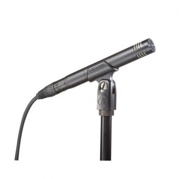 Audio-Technica AT2031 Condenser Microphone купить